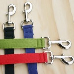 Basic Red Happy Camper Leash